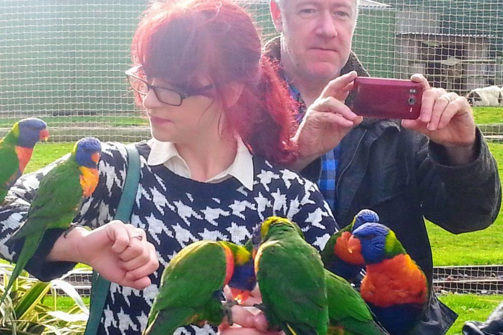 Drusillas - Feeding the birds