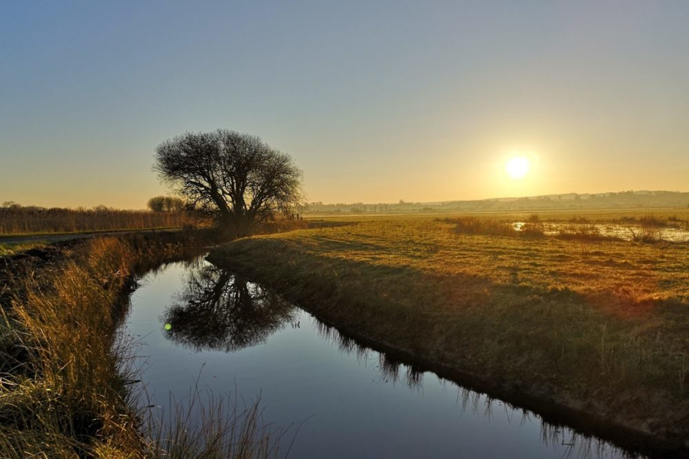 The Pevensey Levels