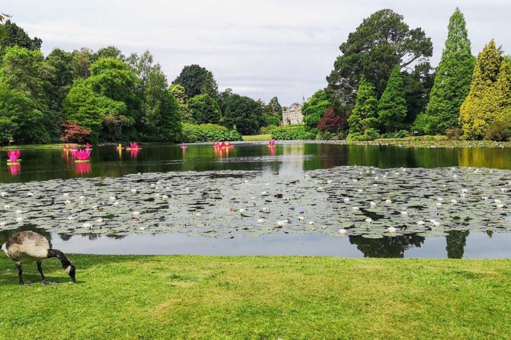 Sheffield Park & Gardens